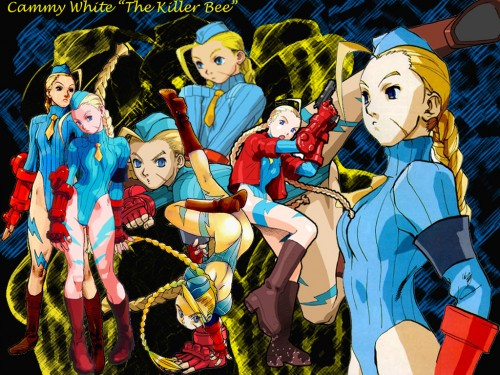 Capcom, Street Fighter, Cammy Wallpaper