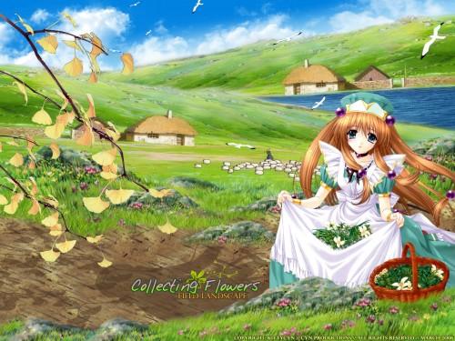 Aoi Kimizuka, Broccoli, Aquarian Age Wallpaper