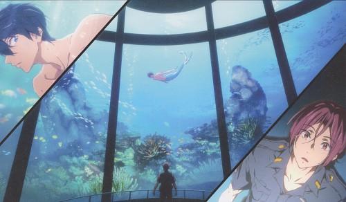 Futoshi Nishiya, Kyoto Animation, Free!, Rin Matsuoka, Haruka Nanase (Free!)