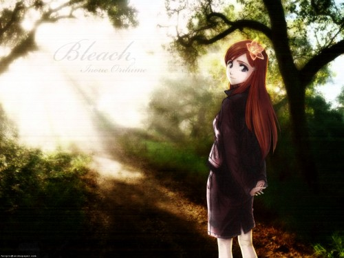 Kubo Tite, Studio Pierrot, Bleach, Orihime Inoue Wallpaper