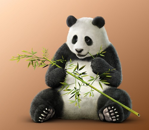 Namco, Tekken, Panda (Tekken)