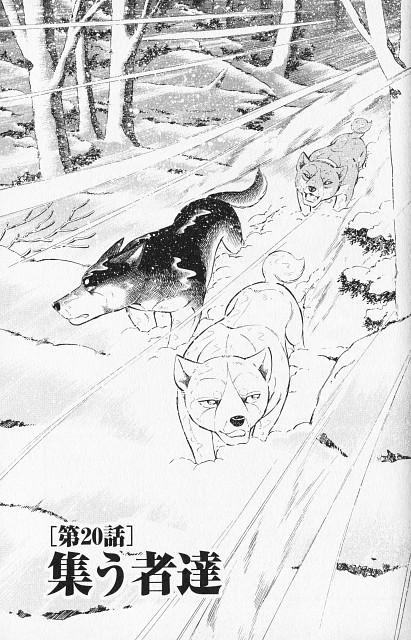 Yoshihiro Takahashi, Ginga: Nagareboshi Gin, Izou, Shirozaru, Sasuke (Ginga: Nagareboshi Gin)