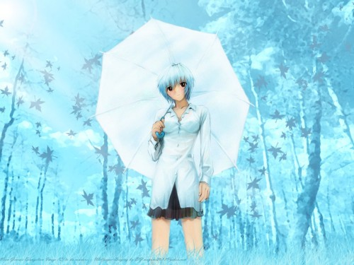 Yuji Kobayashi, Neon Genesis Evangelion, Rei Ayanami, Doujinshi Wallpaper