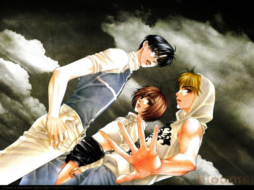 Hisaya Nakajo, Hanazakari no Kimitachi e, Shuichi Nakatsu, Mizuki Ashiya, Izumi Sano Wallpaper