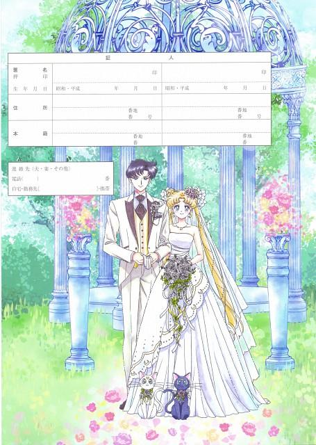 Naoko Takeuchi, Bishoujo Senshi Sailor Moon, Usagi Tsukino, Luna, Artemis