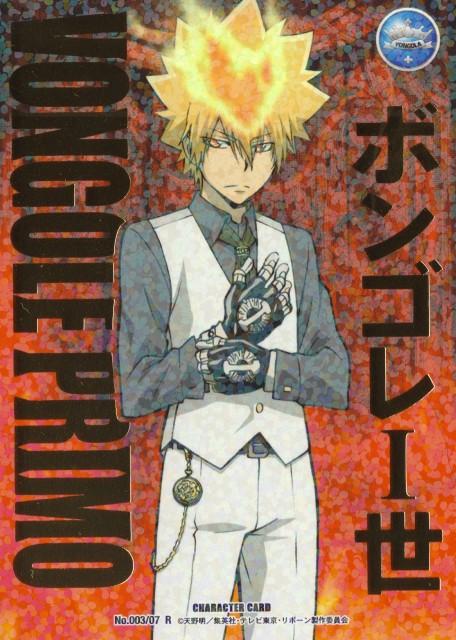 Akira Amano, Artland, Katekyo Hitman Reborn!, Giotto, Trading Cards