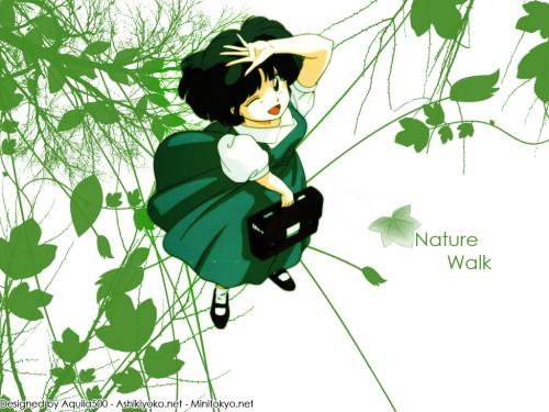 Rumiko Takahashi, Studio Deen, Ranma 1/2, Akane Tendo Wallpaper