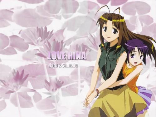 Ken Akamatsu, Love Hina, Shinobu Maehara, Naru Narusegawa Wallpaper