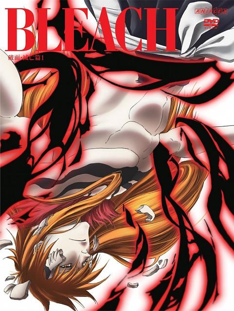 Studio Pierrot, Bleach, Ichigo Kurosaki, DVD Cover