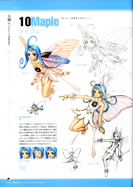 Tony Taka, Shining Tears Collection of Visual Materials, Shining Tears, Maple, Character Sheet