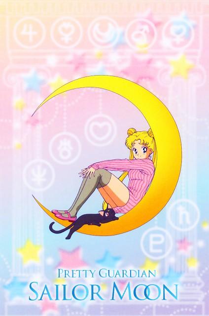 Toei Animation, Bishoujo Senshi Sailor Moon, Usagi Tsukino, Luna