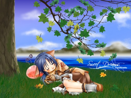 Ragnarok Online, Poring, Swordman (Ragnarok Online), Occupations Wallpaper
