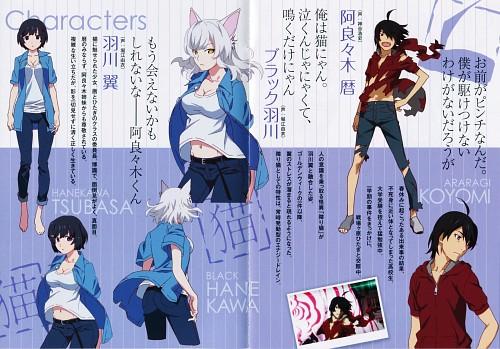 Akio Watanabe, Shaft (Studio), Bakemonogatari, Tsubasa Hanekawa, Koyomi Araragi