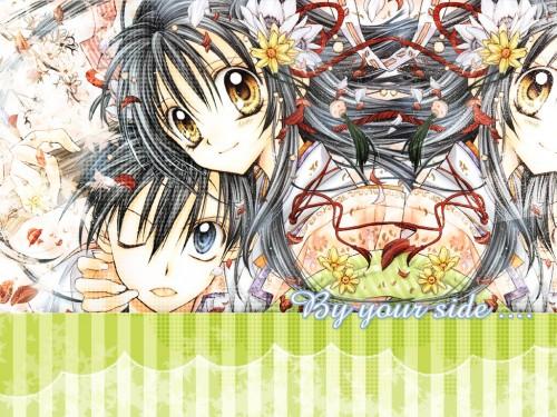 Arina Tanemura, Studio DEEN, Full Moon wo Sagashite, Takuto Kira, Mitsuki Koyama Wallpaper