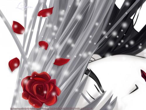 Matsuri Hino, Vampire Knight, Shizuka Hiou, Vector Art Wallpaper