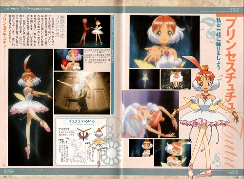 Hal Film Maker, Princess Tutu, Ahiru Arima, Character Sheet