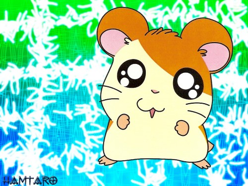 Ritsuko Kawai, TMS Entertainment, Hamtaro, Hamtaro (Character) Wallpaper