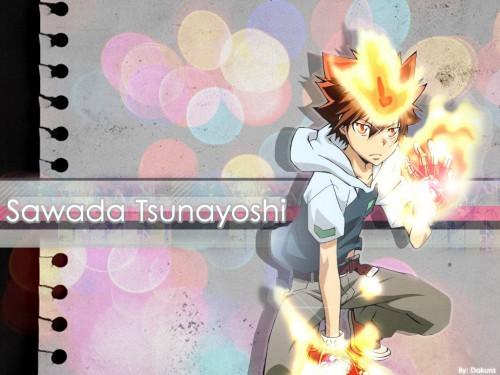 Akira Amano, Artland, Katekyo Hitman Reborn!, Tsunayoshi Sawada Wallpaper