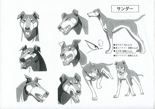 Yoshihiro Takahashi, Ginga: Nagareboshi Gin, Thunder (Ginga: Nagareboshi Gin), Character Sheet