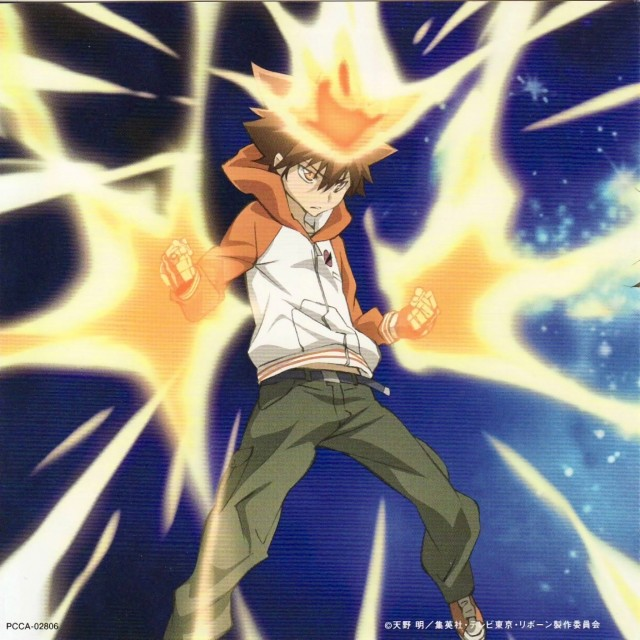 Katekyo Hitman Reborn!, Tsunayoshi Sawada