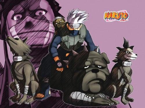 Masashi Kishimoto, Studio Pierrot, Naruto, Momochi Zabuza, Pakkun Wallpaper
