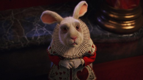 Disney, Alice In Wonderland (2010 Film), White Rabbit, Live Action