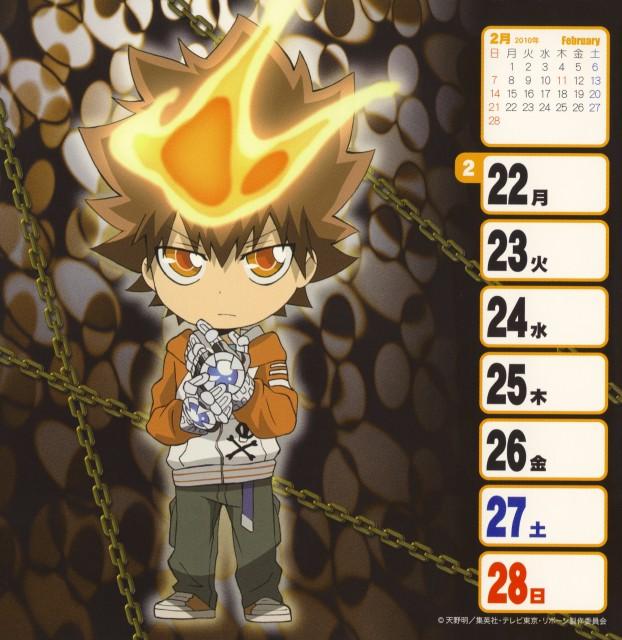 Katekyo Hitman Reborn!, Tsunayoshi Sawada, Calendar