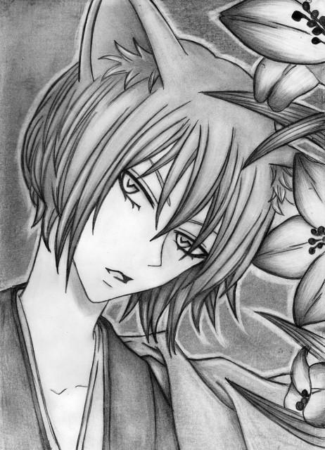 Kamisama Hajimemashita, Tomoe (Kamisama Hajimemashita), Member Art