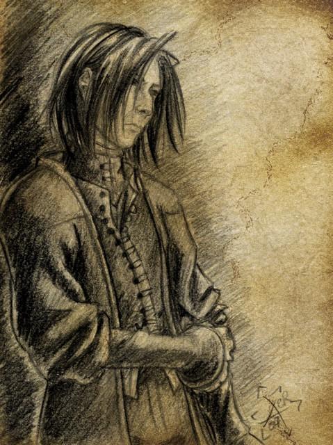 Harry Potter, Severus Snape, Member Art