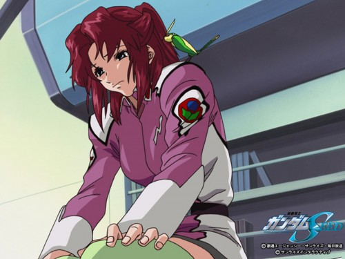 Sunrise (Studio), Mobile Suit Gundam SEED, Fllay Allster, Torii (Gundam SEED), Official Wallpaper