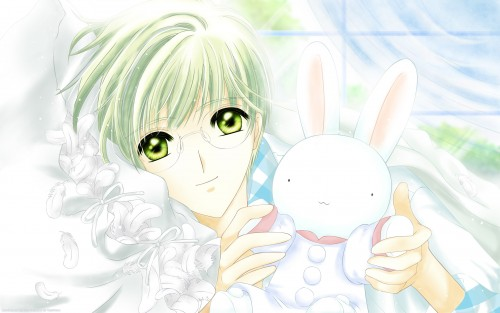 CLAMP, Madhouse, Cardcaptor Sakura, Yukito Tsukishiro, Vector Art Wallpaper