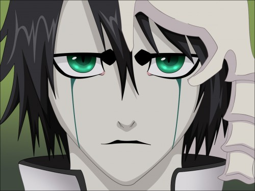 Kubo Tite, Studio Pierrot, Bleach, Ulquiorra Cifer, Vector Art