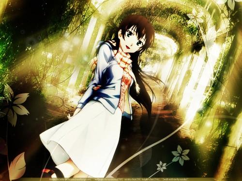 Bandai Visual, P.A. Works, True Tears, Hiromi Yuasa Wallpaper