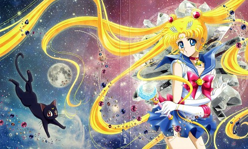 Yukie Sakou, Toei Animation, Bishoujo Senshi Sailor Moon, Luna, Sailor Moon