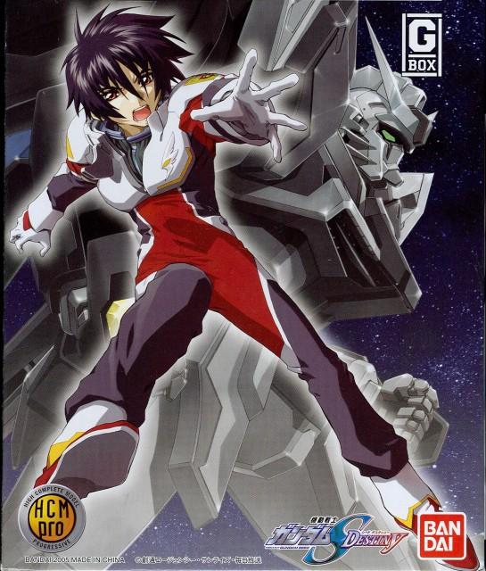 RGB, Mobile Suit Gundam SEED Destiny, Shinn Asuka