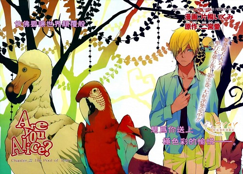 Ikumi Katagiri, Are You Alice, Alice (Are You Alice)