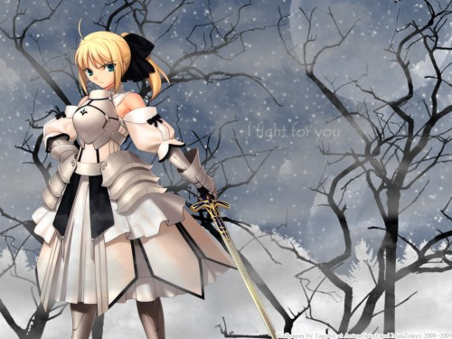 Fate/stay night, Saber Lily Wallpaper