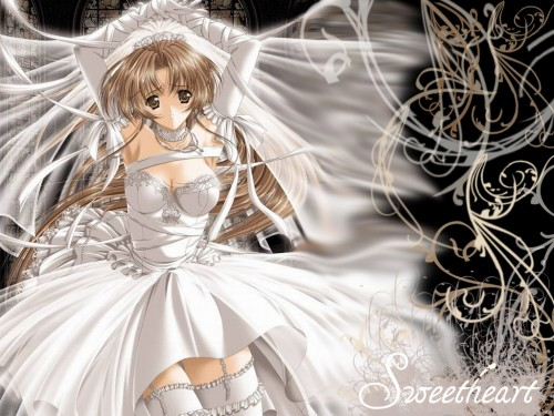 Virgin Bride Wallpaper