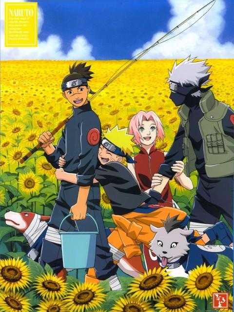 Studio Pierrot, Naruto, Kakashi Hatake, Naruto Uzumaki, Sakura Haruno