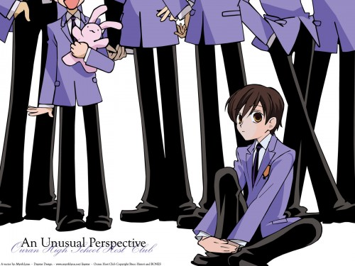 Ouran High School Host Club, Haruhi Fujioka, Vector Art