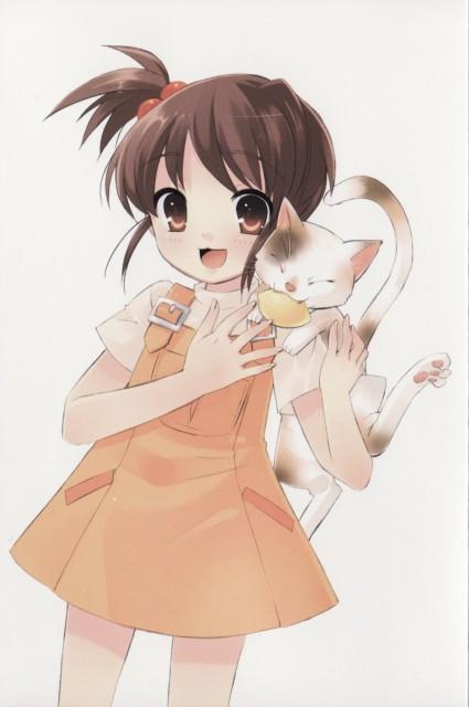 Noizi Ito, Kyoto Animation, The Melancholy of Suzumiya Haruhi, Shamisen (Suzumiya Haruhi), Kyon's Sister