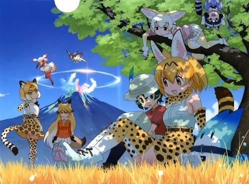 Mine Yoshizaki, Yaoyorozu, Kemono Friends, Hawk (Kemono Friends), Common Raccoon