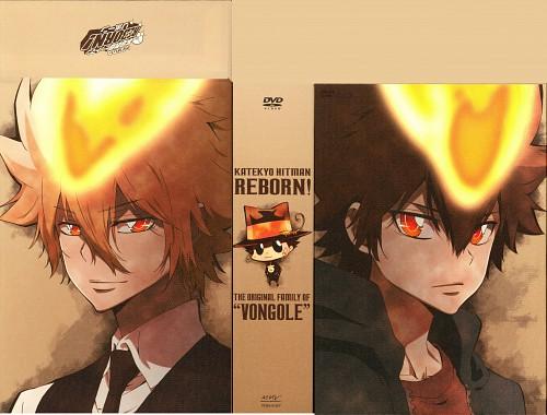 Akira Amano, Katekyo Hitman Reborn!, Reborn (Character), Tsunayoshi Sawada, Giotto