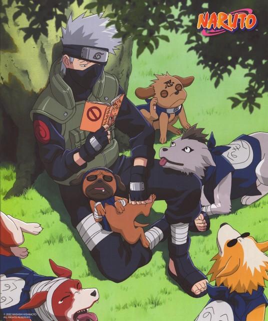 Studio Pierrot, Naruto, Kakashi Hatake, Pakkun, Calendar