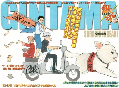 Hideaki Sorachi, Gintama, Sadaharu, Kagura, Shinpachi Shimura