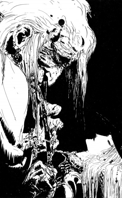 Yoshitaka Amano, Vampire Hunter D