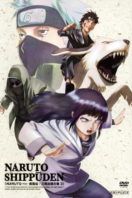 Studio Pierrot, Naruto, Kakashi Hatake, Kiba Inuzuka, Shino Aburame
