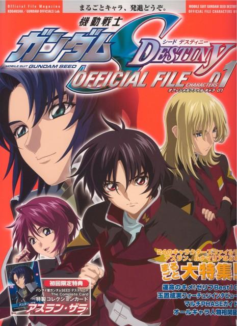 Hisashi Hirai, Sunrise (Studio), Mobile Suit Gundam SEED Destiny, Rey Za Burrel, Athrun Zala