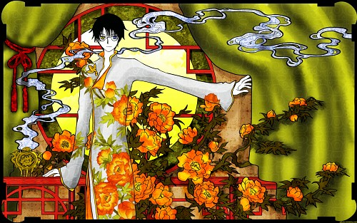 CLAMP, Production I.G, xxxHOLiC, Kimihiro Watanuki, Vector Art Wallpaper