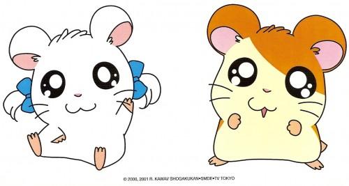 Ritsuko Kawai, TMS Entertainment, Hamtaro, Hamtaro (Character), Bijou